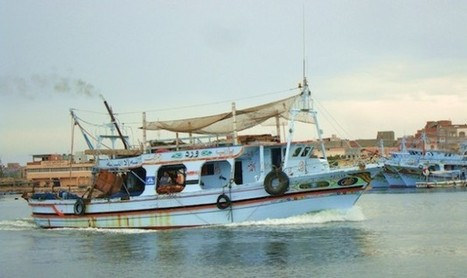Net Tightens Around Fishing in Egypt   Inter Press Service   Food issues   Scoop.it