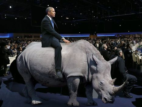 Obama Increases Sense Of Urgency By Riding Last White Rhino On Earth Through Climate Talk | Visual & digital texts | Scoop.it