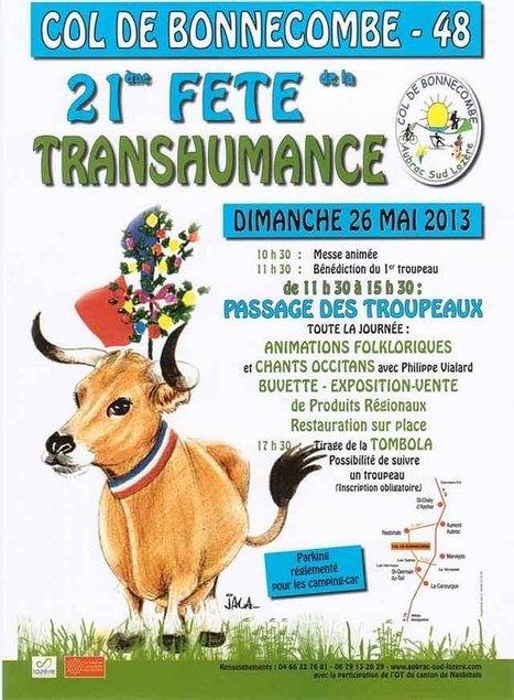 Transhumance 2014 | Col de Bonnecombe - Aubrac Sud Lozère | L'Aveyron | Scoop.it