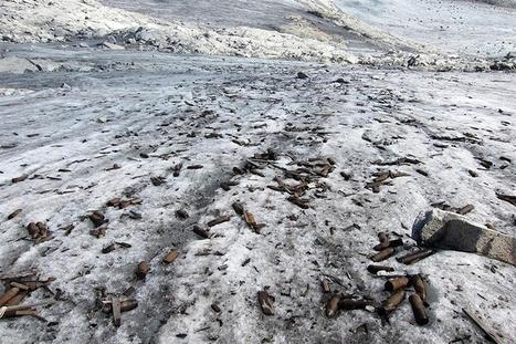Melting glacier reveals World War I ammunition | Binterest | Scoop.it