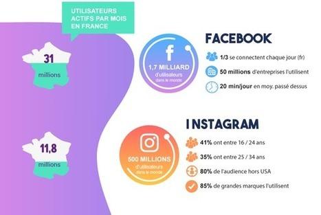 Infographie : l'audience des principaux réseaux sociaux | CCI du Tarn | Scoop.it