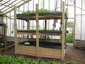 What is Aquaponic Gardening? | Vertical Farm - Food Factory | Scoop.it