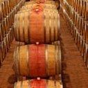 """Vin de Bordeaux: millésime 2013 """"inégal"""" selon l'Union des grands crus   Autour du vin   Scoop.it"""