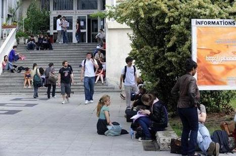 Université : l'anglais déjà adopté par les trois quarts des chercheurs français | La vie des SHS : veille recherche et enseignement | Scoop.it