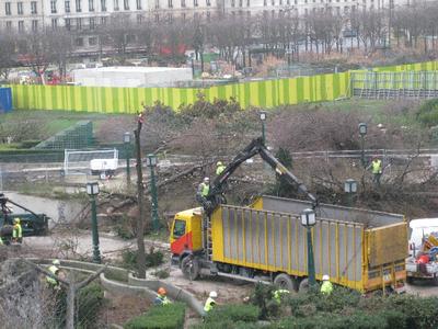 Bal forestier tragique aux Halles : 240 morts ! | Projet les Halles | Scoop.it