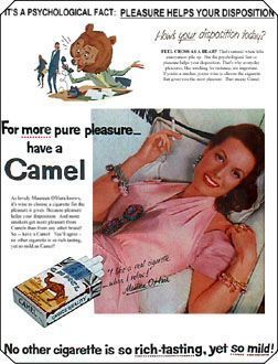 """truth in advertising"" - camel cigarettes How's Your Disposition today? You must need a smoke 
