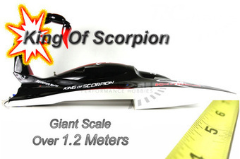 Buy Online Remote Control Gas Petrol Boat | Get RC Airplanes at Affordable Rates | Scoop.it