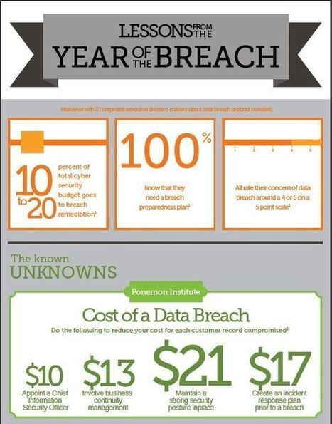 Lessons Learned from Data Breaches [INFOGRAPHIC