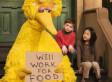 'Fired Big Bird' Responds To Romney   Small Business Development   Scoop.it