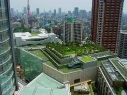 Biodiversité et ville durable | l'écologie en milieu urbain | Scoop.it