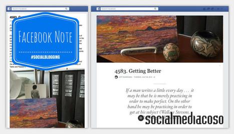 Facebook Note: pro e contro - Socialmediacoso   Facebook Daily   Scoop.it