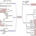 Picasa Web Albums - yapatine | Cartes heuristiques en classe | Scoop.it