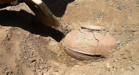 Quand une jarre vieille de 800 ans ressuscite un légume disparu | Histoire et Archéologie | Scoop.it