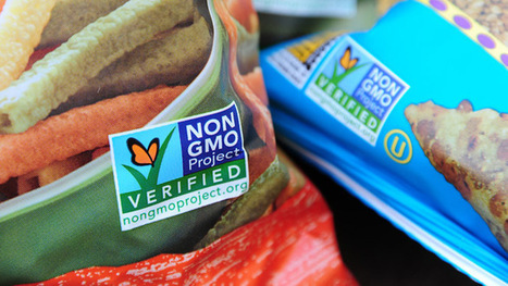 Total ban on GM food production mulled in Russia | The Barley Mow | Scoop.it