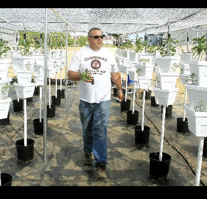 Church gets hydroponic garden up and running | Times Free Press | Vertical Farm - Food Factory | Scoop.it