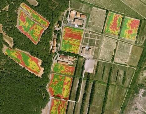 AgroTIC » Séminaire viticulture de précision – 25 avril 2014 | Robotique de service | Scoop.it