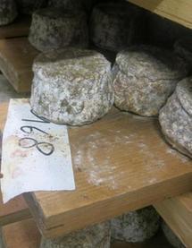 La recette à succès de la fromagerie Maurice - 05/10/2014, Loches (37) - La Nouvelle République | Revue de presse - Loches, Touraine - Châteaux de la Loire | Scoop.it