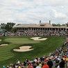 Golf PGA 2013 Live Stream Online