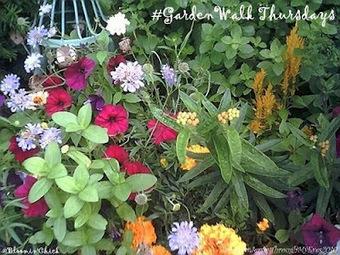 #gardenchat: Adventures In Gardening: A New Spin on #GardenWalk Thursdays! | Annie Haven | Haven Brand | Scoop.it