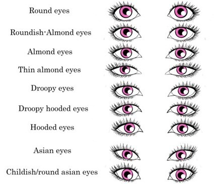 eye shape drawing reference drawing reference