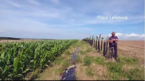 Témoignage de Marc Lefebvre sur l'agroforesterie
