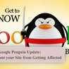Google Penguin Update: How to Prevent your Site from Getting Affected
