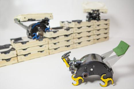 Self-organizing robots: Robotic construction crew needs no foreman (w/ video) | Peer2Politics | Scoop.it