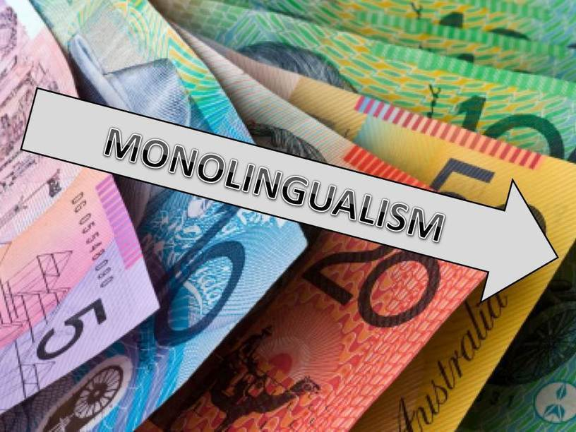 monolingualism disadvantages to minorities