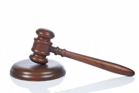 La loi de consommation inquiète la Fevad   Digital & eCommerce   Scoop.it
