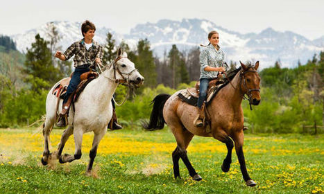 Image result for horse ride in shimla honeymoon couples