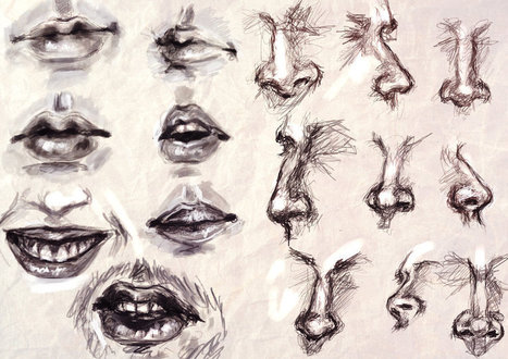 Mouth Reference In Drawing And Painting Tutorials