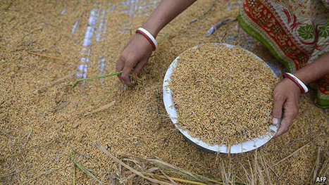 Is the world running out of food? - Economist (2015)   Food Policy   Scoop.it