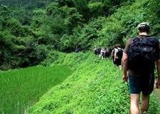 Turismo amigable con el ambiente | Río+20 El Salvador | Scoop.it