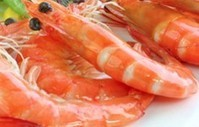 Chinese shrimp processor facing delisting - SeafoodSource.com | FOOD TECHNOLOGY  NEWS | Scoop.it