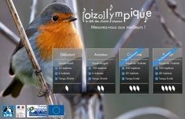 Les chants des oiseaux | 694028 | Scoop.it
