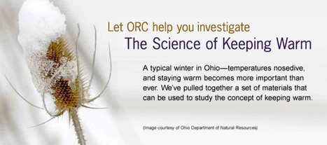 The Science of Keeping Warm - Ohio Resource Center Shares Timely Resource | Implementing Common Core Standards in Special Education | Scoop.it