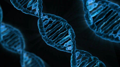 Comment la Chine a mis la main sur les données génétiques de millions de femmes ...