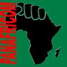 PANAFRICOM-NEWS