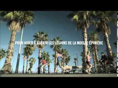 Wings For Life World Run : Courez pour ceux qui ne peuvent pas | Coté Vestiaire - Blog sur le Sport Business | Scoop.it