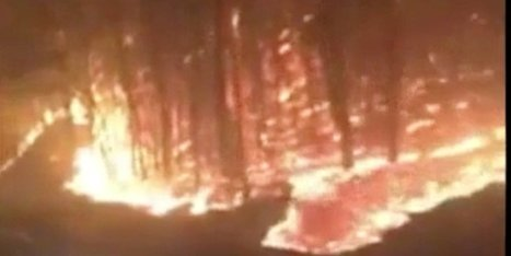 Massive Wildfire Engulfs Tennessee Resort Towns, Kills 3 | Upsetment | Scoop.it