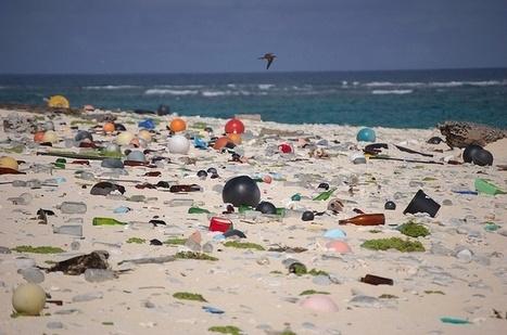 Government Resolution Rises but Ocean Health Still Sinks   Ocean News   Scoop.it