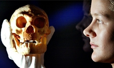 Homo floresiensis: scientists clash over claims 'hobbit man' was modern human with Down's syndrome   Teaching history and archaeology to kids   Scoop.it