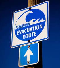 Alerte au tsunami dans les Caraïbes ! | Tout sur le Tourisme | Scoop.it