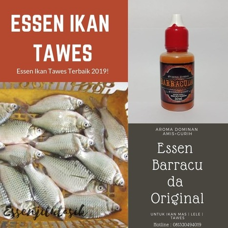 Essen Oplosan Ikan Tawes Terbaik 2019 Mantap