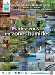 Évadez-vous en zones humides | Variétés entomologiques | Scoop.it