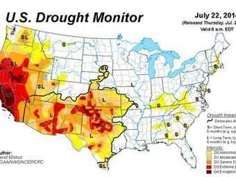 "Yikes! California's extreme drought could last ""a decade or more"", 2014 driest year in a century 