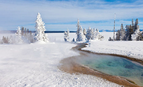 Winter Wildlife in Yellowstone Family Adventure | National Geographic Expeditions | Motorhome Madness | Scoop.it