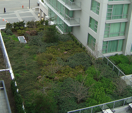 Toronto Becomes First City To Mandate Green Roofs | New Civilizations | Scoop.it