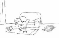 Simon's Cat   Hall Veterinary Surgery   Cats Rule the World   Scoop.it