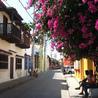 Cartagena de Indias - 10º edición de boletín semanal